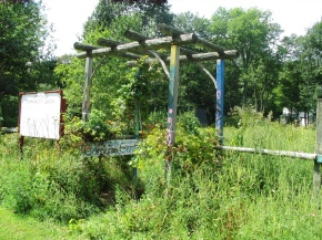 Hampshire Community Garden Revamped